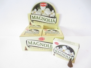 Magnolia kegeltjes